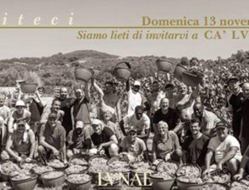 Ca Lunae Harvest Festival